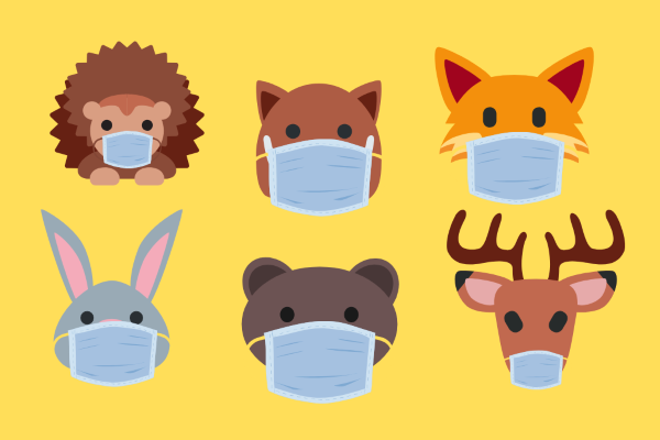 Zwierzęta w maseczkach